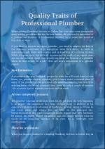 Quality traits of Professional Plumber