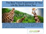 The Best Travel Experience Of Your Life By South Africa Tour