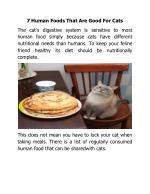 7 Human Foods That Are Good For Cats