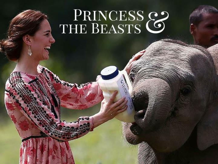 Princess and the Beasts