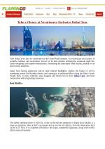 Flamingo Travels: Take a Glance at Vacationers Exclusive Dubai Tour