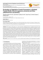 Evaluation of Vegetative Growth Parameters in Biofield Treated Bottle Gourd (Lagenaria siceraria) and Okra (Abelmoschus