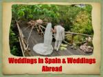 Wedding under Natural Bounty in Spain and Arrangements by Wedding Planners