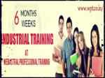6 Weeks/ 45 Days Industrial Training in Mohali at Webastral Professional Training