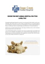 Choose The Best Animal Hospital For Your Lovely Pet
