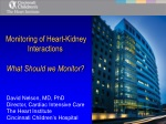 Monitoring of Heart-Kidney Interactions What Should we Monitor?