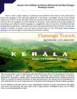 Rejoice Your Holidays In Heaven With Kerala Holiday Packages | Flamingo