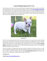 PPT - Waaba Pugs - Waabapugs Puppies For Sale PowerPoint