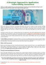 A Strategic Approach to Application Vulnerability Assessment