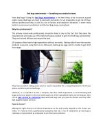 Bed bugs exterminator — Everything you needed to know