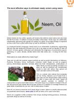 The most effective ways to eliminate mealy vermin using neem oil