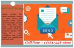 Email Campaign Services & Strategy