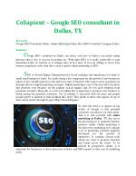 CoSapient – Google SEO consultant in Dallas, TX