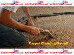 Professional Cleaning Services Honolulu