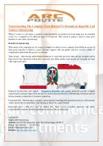 Understanding The Complete Facts Related To Dominican Republic Call Centers Outsourcing