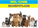 Shop for the best dog house with air conditioner at Securepets.com