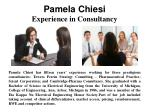 Pamela Chiesi - Experience In Consultancy