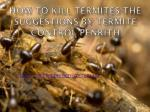 How to Kill Termites-The Suggestions by Termite Control Penrith