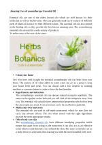 Amazing Uses of Aromatherapy Essential Oil