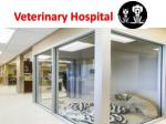 Veterinary Hospital-Animal Emergency Service