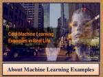 About Machine Learning Examples