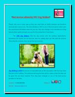 Best Services offered by NYC Dog Walkers