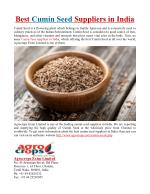 Best Cumin Seed Suppliers in India