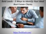 Bold Leads - 3 Ways to Identify Your Ideal Real Estate Clients