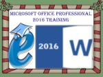 Microsoft Office Professional 2016 Training