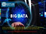 Big Data Analytics Services | Scottlinehealth.Com
