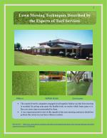 Lawn Mowing Techniques Described by the Experts of Turf Services