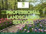 MSW Landscaping