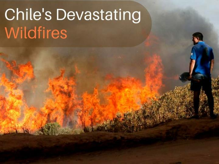 Chile's devastating wildfires