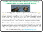 Kick-Start the Next Texas Duck Hunting Expedition by Understanding Top Three Waterfowl Species