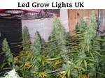 led grow lights uk - ledhydroponics.co.uk