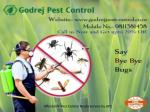 Affordable Pest Control Noida Service by GPC