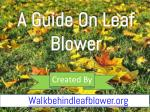 An Ultimate Buying Guide of Leaf Blower