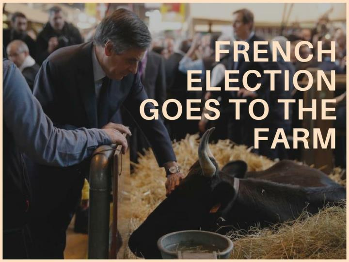 french election goes to the farm n.