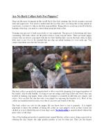 No bark collars safe for puppies