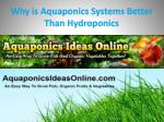 Why is Aquaponics Systems Better Than Hydroponics