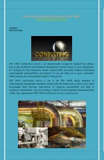 Effective environmental management system of Barile Consulting