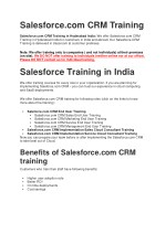 Salesforce Sales Cloud Training in India