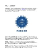 What is nebosh | Industrial safety courses in kerala