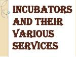 A Lot of Benefits of Hiring a Business Incubator