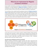 What do you requirement for Magento eCommerce Website?