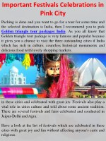 Important Festivals Celebrations in Pink City