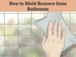 How to Mold Remove from Bathroom