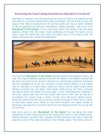 How Exciting The Camel Trekking Would Be From Marrakech To Fes Desert?