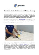 Everything Wanted To Know About Mattress Cleaning