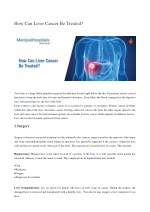 Can Liver Cancer Treated ?